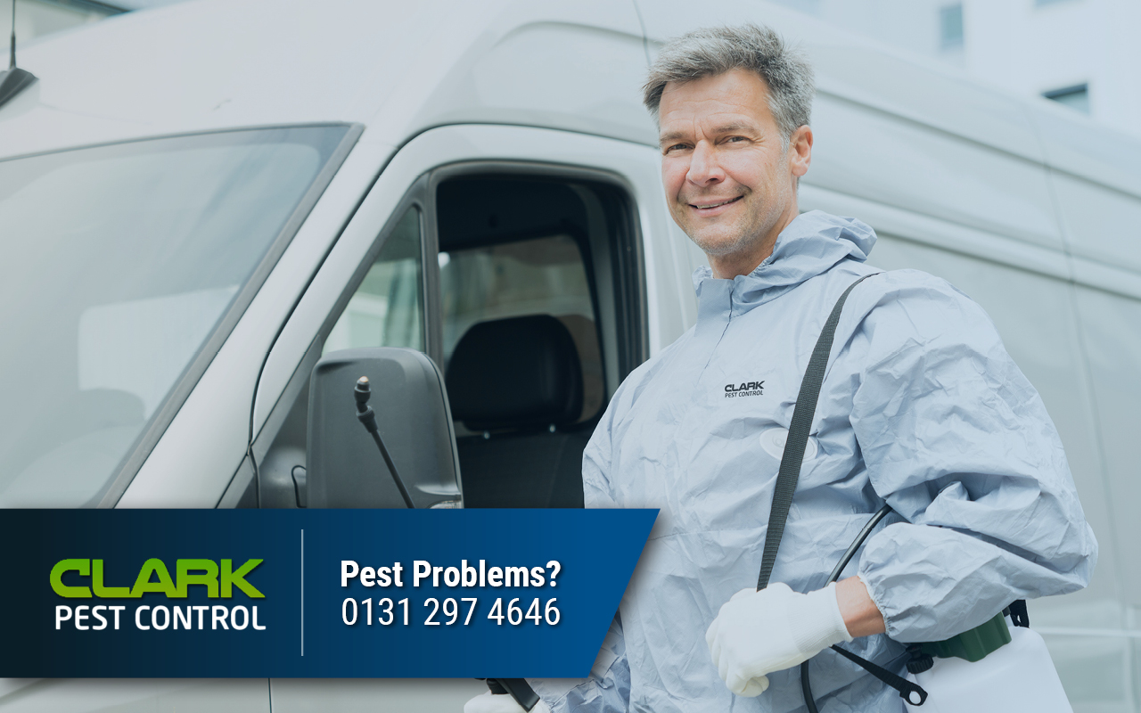Pest Control Swinton